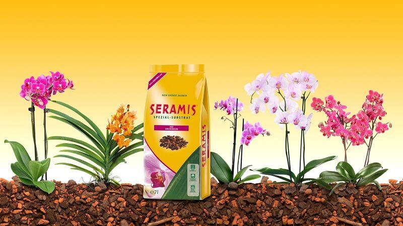 Серамис - самый подходящий грунт для орхиеводов