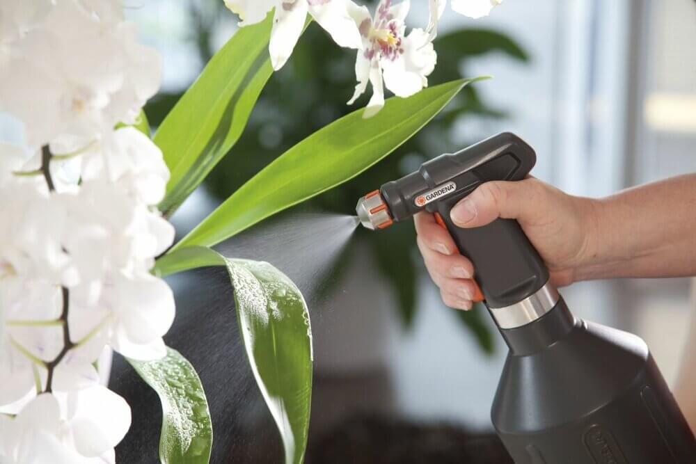 Как применять актару для орхидей