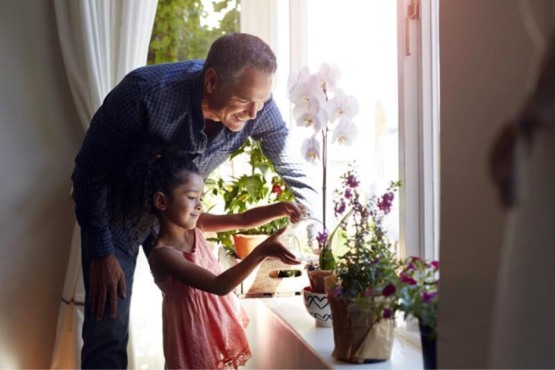 Орхидея в доме, приметы и суеверия