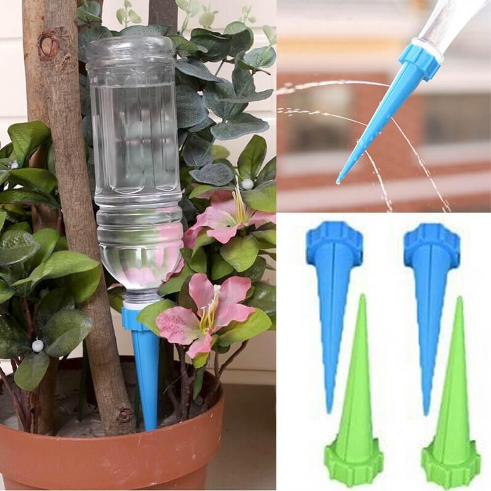 Как правильно поливать фиалки в домашних условиях