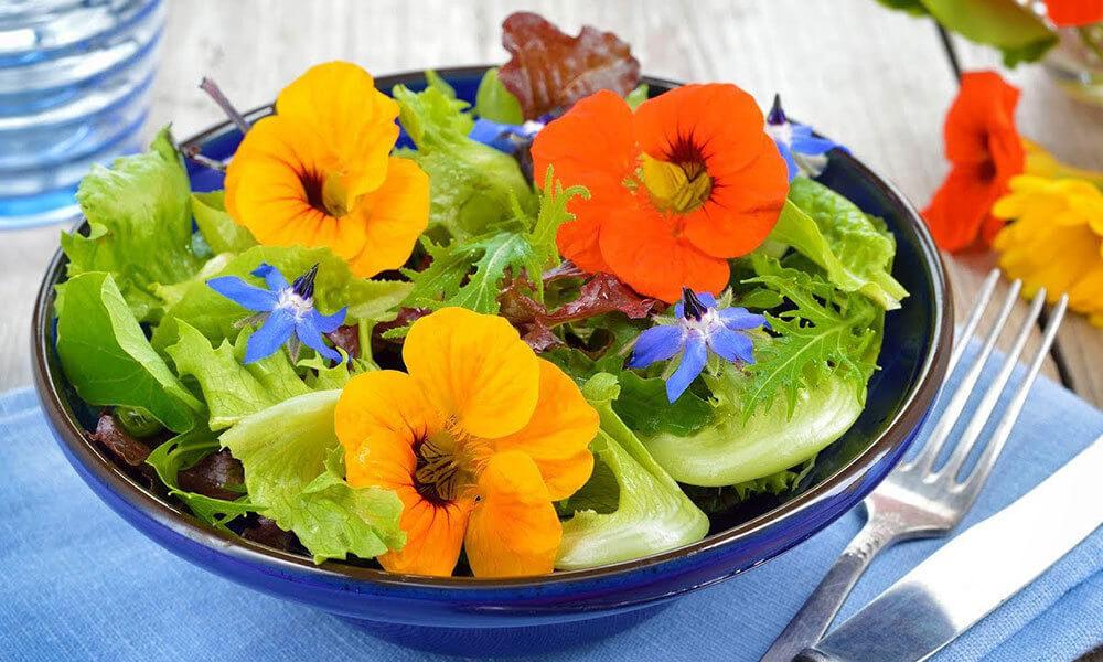Цветочная кулинария: какие цветы можно есть
