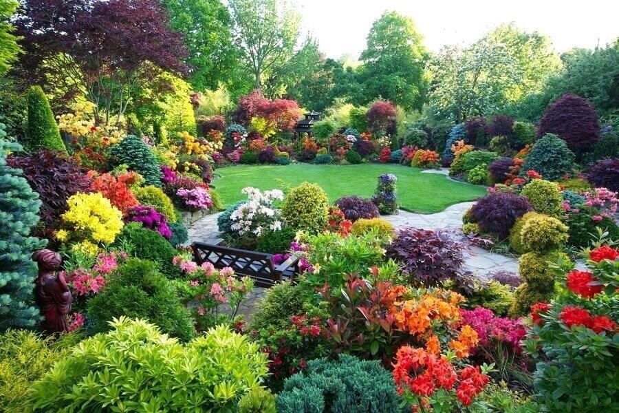 Календарь садовода: июнь в саду
