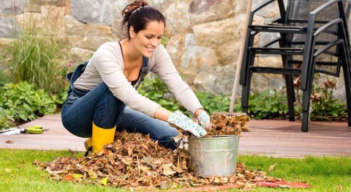 Что можно делать в огороде осенью?