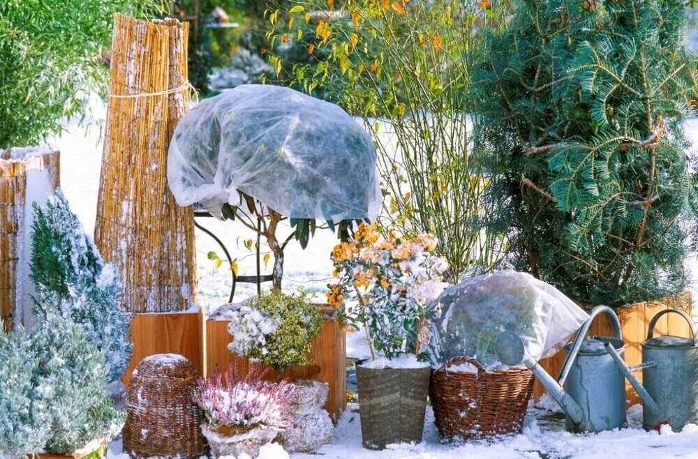 Год в огороде. Как распланировать работу в саду и огороде по месяцам?
